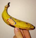 photo_ banane
