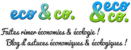 logo_eco&co