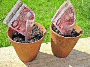 argent qui pousse
