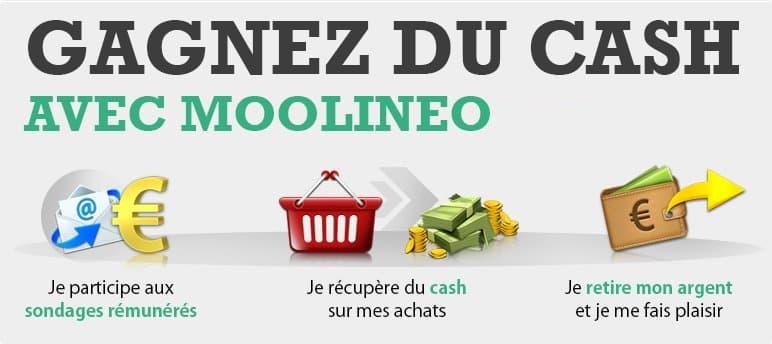 Gagner de l'argent sur internet avec Moolineo