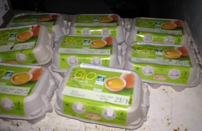 œufs bio poubelle supermarché