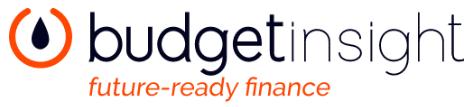 budget insight logo